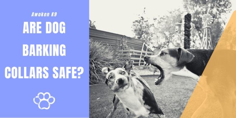 are dog barking collars safe